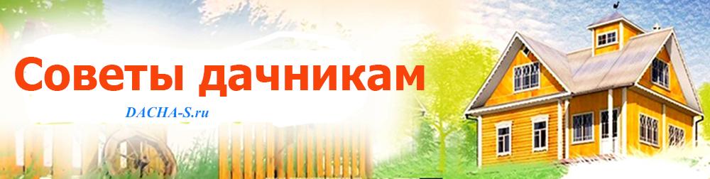Dacha-s.ru